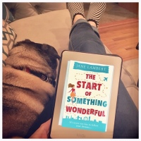 Book Review: The Start of Something Wonderful by Jane Lambert