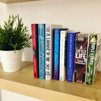 my airbnb was super stylish that I had to take a picture of my books there!